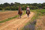 Two horse riders on heathland, Shottisham, Suffolk, England