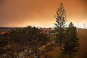 A blanket of smoke descends on Christison Park, Watsons Bay, Sydney, Australia.