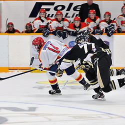 TRENTON, ON - Oct 26: Ontario Junior Hockey League game between Wellington Dukes and Trenton Golden Hawks. Mike Soucier #14 of the Wellington Dukes skates with the puck while being chased down by Brandon Scott #77 and Jordan Minello #9 of the Trenton Golden Hawks..(Photo by Shawn Muir / OJHL Images)