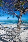Hammock on the beach of the SafeLanding resort, Nacula island, Yasawas, Fiji, South Pacific