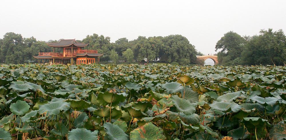 Hangzhou, China. 2007