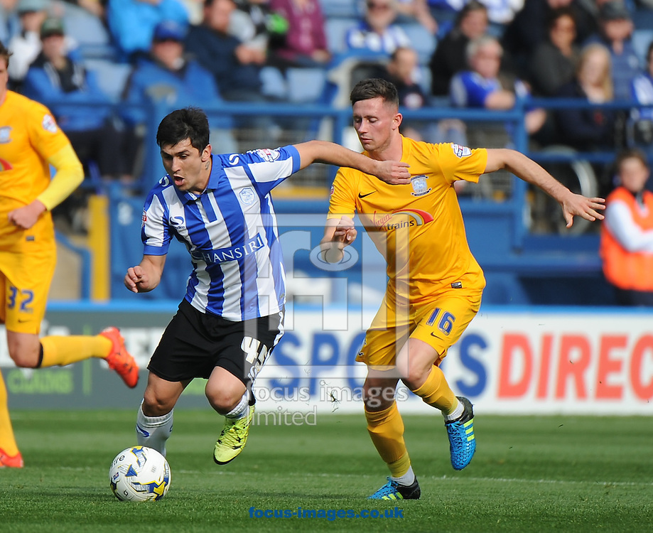 Fernando Forestieri of Sheffield Wednesday and Alan Browne of Preston North End during the Sky Bet Championship match at Hillsborough, Sheffield<br /> Picture by Richard Land/Focus Images Ltd +44 7713 507003<br /> 03/10/2015
