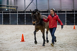 Werndl Benjamin, GER, Famoso OLD<br /> The Dutch Masters 2020<br /> © Hippo Foto - Sharon Vandeput<br /> 12/03/20