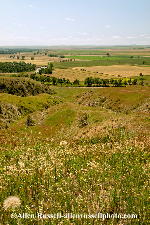 Little Bighorn Battlefield National Monument, Montana, Reno Benteen Battlefield coulee leading down to river