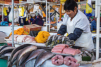 AREQUIPA, PERU - CIRCA APRIL 2014: Fish seller at the San Camilo market in Arequipa. Arequipa is the Second city of Perú by population with 861,145 inhabitants and is the second most industrialized and commercial city of Peru.