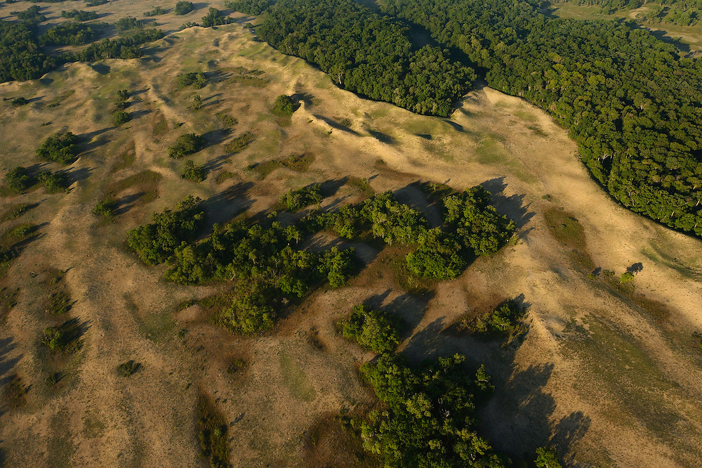 Aerials over the Danube delta, Letea forest, Danube delta rewilding area, Romania