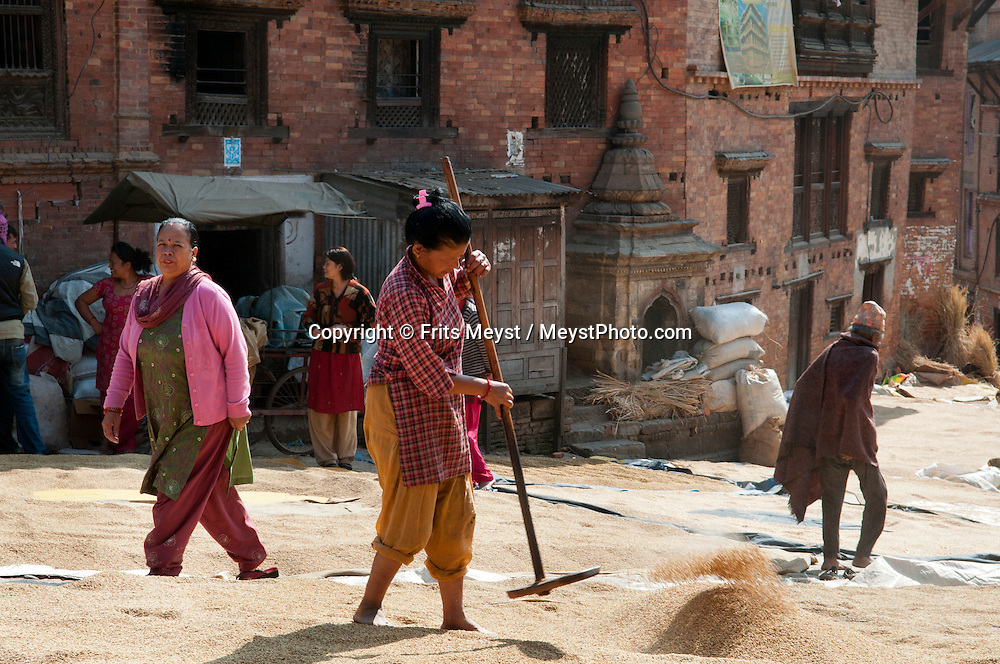 Bhaktapur, Central Valley, Nepal, November 2012.  Women spread the rice on the ground so it can dry. Located about 20 km east of Kathmandu in the Kathmandu Valley, Bhaktapur is one of the 3 royal cities in the Kathmandu Valley. The others are Kathmandu, the capital of Nepal, and Patan. Bhaktapur is filled with monuments, most terra-cotta with carved wood columns, palaces and temples with elaborate carvings, gilded roofs, open courtyards. The city is dotted with pagodas and religious shrines. Lying along the ancient trade route between India and Tibet, Bhaktapur is surrounded by mountains and provides a magnificent view of the Himalayas. Photo by Frits Meyst/Adventure4ever.com