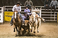 Steer wrestler Chuck Graham makes his run during slack at the Bismarck Rodeo on Saturday, Feb. 3, 2018. This photo and more from most runs are available at Bobwire-S.com.