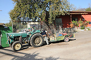 Israel, Lower Galilee, Kibbutz Alonim founded 1938. tractor and cart
