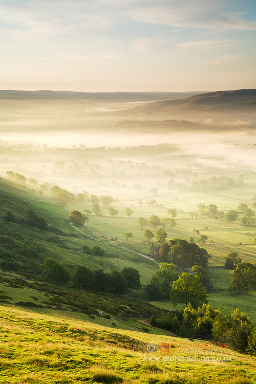 Trees & mist, Hope Valley, Peak District. Dawn light highlights the mist on the valley floor, captured from this viewpoint on Mam Tor.
