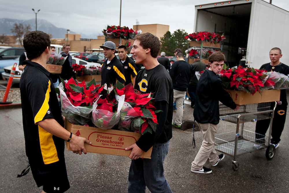 Cottonwood High School baseball players unload crates of poinsettias?over 200 in total?to deliver to veterans at the George E. Wahlen Department of Veterans Affairs Medical Center, Wednesday, Dec. 5, 2012.