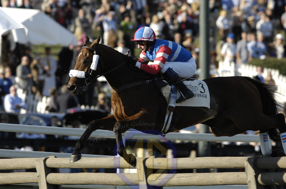 20 October 2007:  Jockey Carl Rafter aboard Fields of Omagh clears a timber hurdle in the $50,000 Porsche International Gold Cup during the 70th running of the International Gold Cup Races on October 20, 2007 at the Great Meadow in The Plains, Va.  The race was won by See youattheevent (2) ridden by Robert Walsh with Shadyvalley (6) ridden by Russell Haynes and Woodmont (5) with Jeff Murphy aboard finishing 2nd and 3rd..