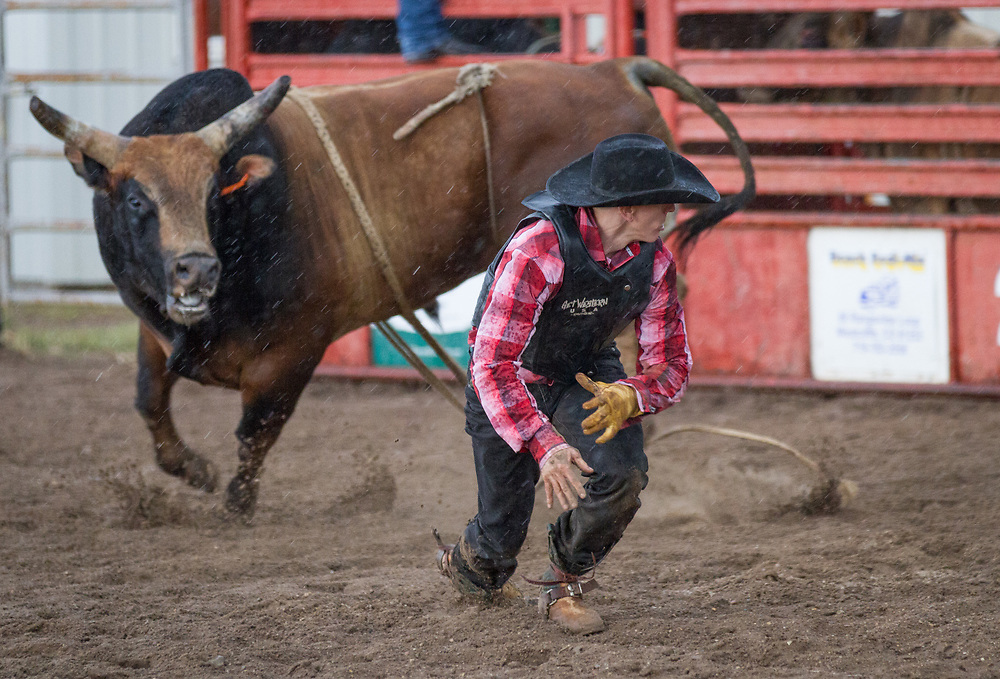 Action abounds at the 71st annual Westcliffe Stampede Rodeo.