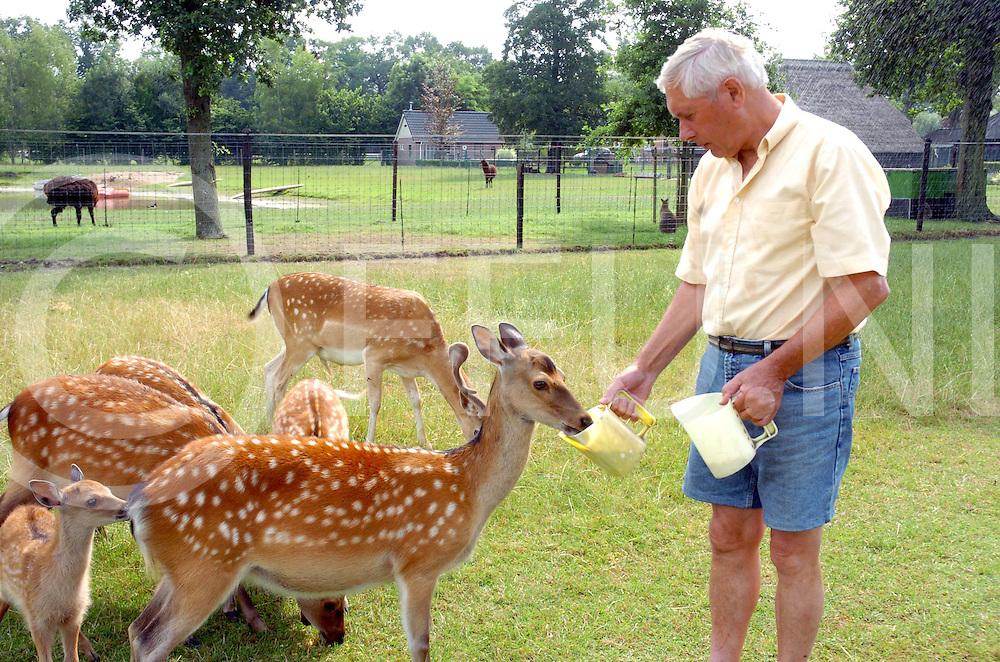 060720, nieuwleusen,ned<br /> Heer ten Cate voert zijn exotische dieren.<br /> foto: herten met op de achtergrond een moeflon en een kangeroe<br /> fotografie frank uijlenbroek&copy;2006 frank uijlenbroek