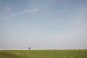 A flock of birds fly over the sparse landscape at Bath Racecourse adjacent to the Cotswold Way