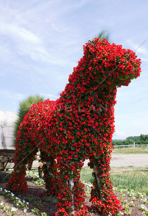 Flower covered animal topiary