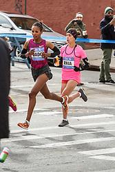 NYC Marathon, Dado, El Moukim