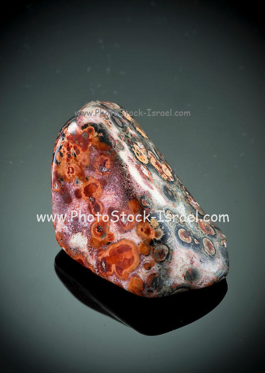 Cutout of a leopard skin gemstone on black background