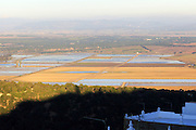 Flat paddy fields with water farmiing rice, Vejer de la Frontera, Cadiz province, Spain