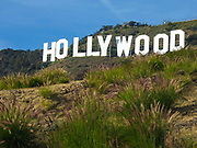 The Iconic Hollywood Sign in Los Angeles California