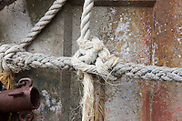 Tied knot rope, close up