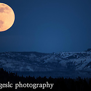 The full moon rising over the Absaroka Mountains. Yellowstone National Park <br />