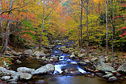 Autumn scene at Big Creek, located in Great Smoky Mountains National Park, North Carolina