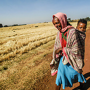 Featured Programme: Ethiopia