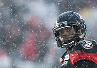 The CFL Eastern Final between the Ottawa RedBlacks and the Edmonton Eskimos at TD Place Stadium in Ottawa, ON. Canada on Nov. 20, 2016.<br /> <br /> PHOTO: Steve Kingsman/Freestyle Photography