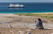 A woman takes a photograph of a Gentoo penguin at a penguin colony on New Island.