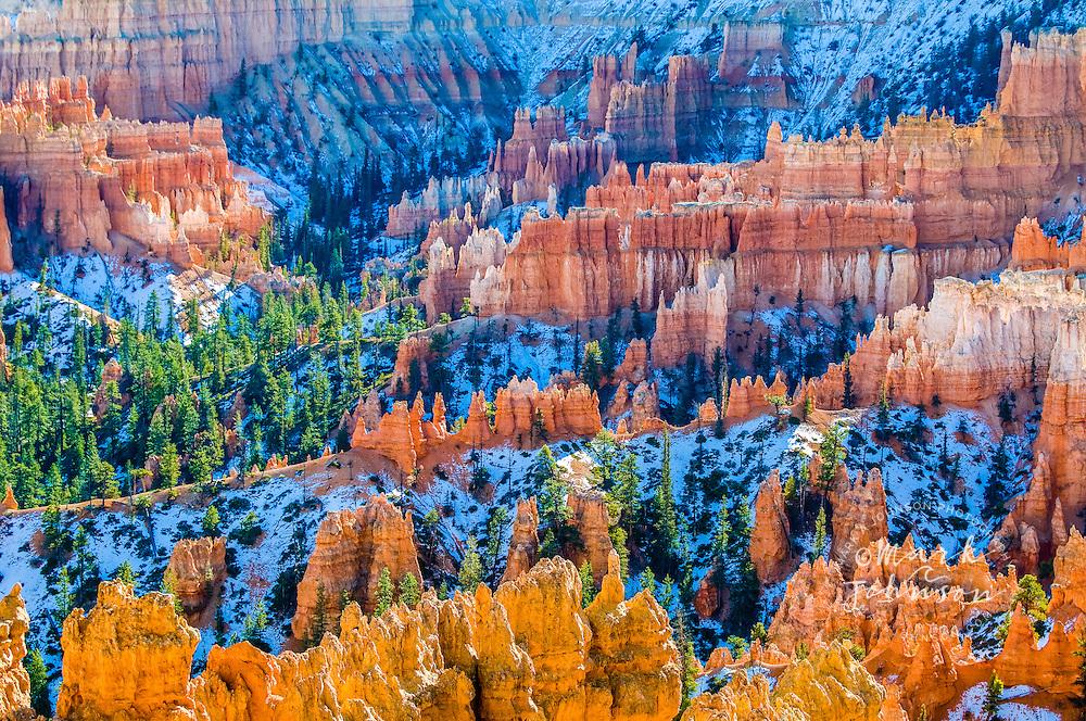 Bryce Canyon National Park, Utah, USA --- Hoodoos at Bryce Canyon