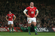 Gethin Jenkins of Wales. Invesco Perpetual series, Wales v Australia at the Millennium Stadium on Saturday 28th Nov 2009.  pic by Andrew Orchard, Andrew Orchard sports photography, .EDITORIAL USE ONLY
