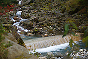 Japan, Honshu Island, Kanagawa Prefecture, Fuji Hakone National Park,
