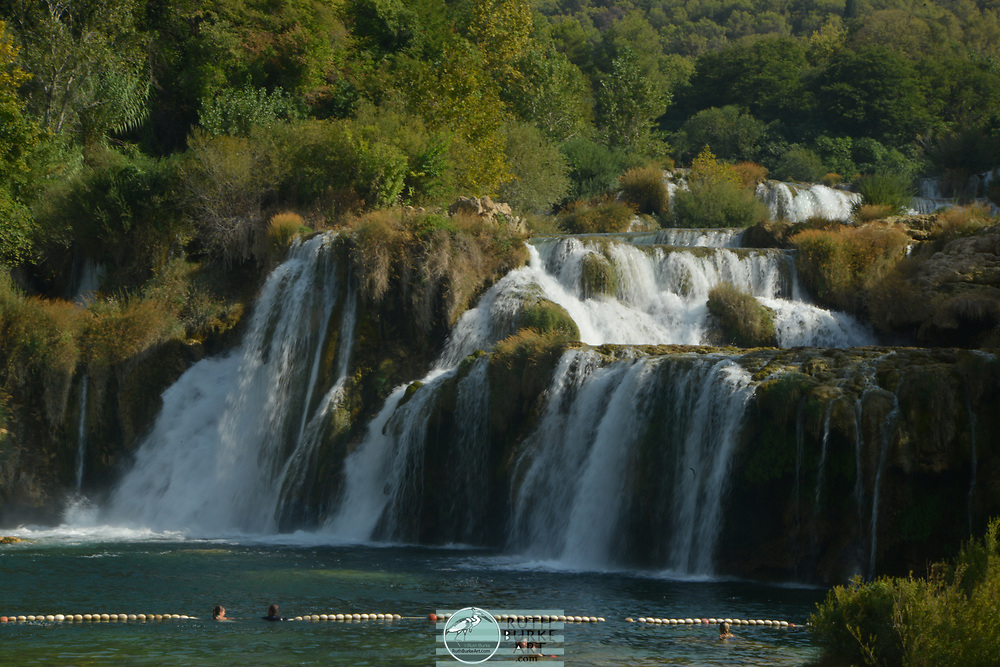 Krka National Park (Croatian: Nacionalni park Krka) is one of the Croatian national parks, named after the river Krka (ancient Greek: Kyrikos) that it encloses. It is located along the middle-lower course of the Krka River in central Dalmatia, in Šibenik-Knin county, downstream Miljevci area, and just a few kilometers northeast of the city of Šibenik.[1] It was formed to protect the Krka River and is intended primarily for scientific, cultural, educational, recreational, and tourism activities. It is the seventh national park in Croatia and was proclaimed a national park in 1985.