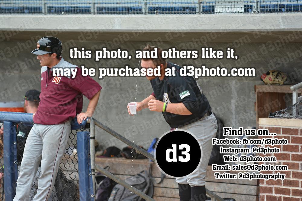 Baseball: NCAA Division III South Regional. Alvernia University vs. College of New Jersey