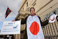 Pictured is Ali Bradshaw. Protesters take part in the 'Blue Murder' stop whaling protest outside of the Norwegian Embassy as part of a worldwide anti-whaling initiative. Friday, 8th November 2013. Picture by Ben Stevens / i-Images
