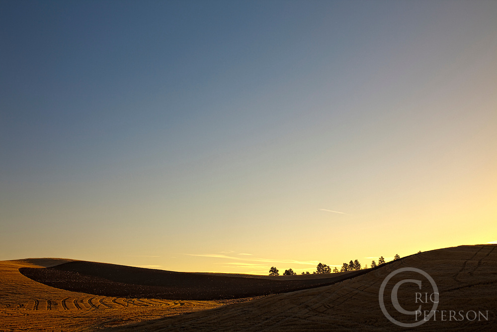 wheat field and turned soil create shapes and patterns in palouse sunrise landscape