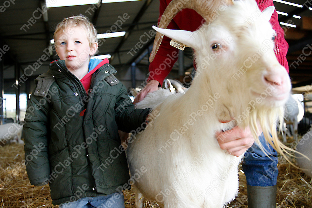 Oisin Griffin made a new friend at an open day at St. Tolas Organic Goats Cheese farm in Inagh on Thursday.<br /><br /><br /><br />Photograph by Yvonne Vaughan.