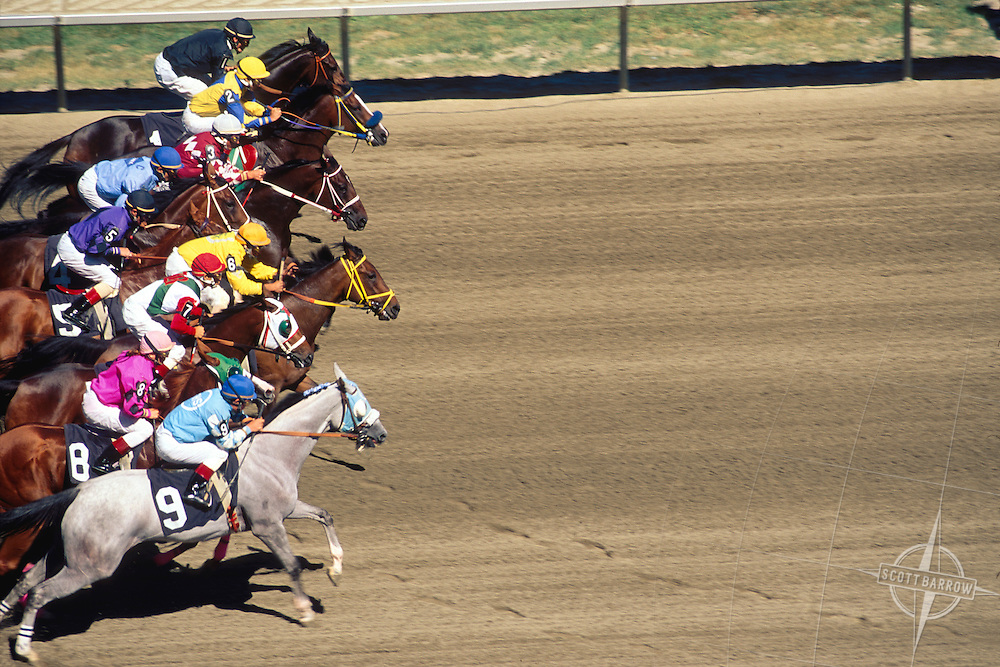 Horse racing at the Meadowlands Race Track located in East Rutherford, New Jersey, USA, in the Meadowlands Sports Complex.