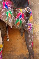 Inde, Rajasthan, Jaipur, elephant peint au fort d'Amber // India, Rajasthan, Jaipur, elephant at Amber fort.