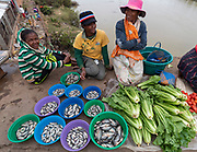 Selling fish and vegetables at Rue Andriamanelo, Madagascar.