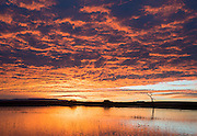 The magic of sunrise and clouds.  Bosque del Apache NWR, New Mexico