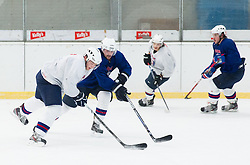 and Klemen Pretnar during practice session of Slovenian Ice Hockey National Team for IIHF World Championship in Sweden and Finland, on March 28, 2013, in Arena Zlato Polje, Kranj, Slovenia. (Photo by Vid Ponikvar / Sportida.com)