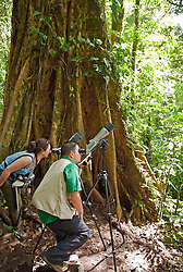 Monteverde, Guanacaste:  A birding walk guide  and visitor use spotting scopes on a rare sunny day in the Monteverde Cloud Forest Preserve. Straddling Costa Rica's continental divide 110 miles west of San Jose, the Monteverde Cloud Forest Preserve is a virgin forest jungle brimming with incredible numbers of birds, butterflies, and mammals as well as more than 2,500 plant species. No more than 100 visitors are allowed within the grounds at any one time to preserve this unique and fragile ecology. A web of trails allows exploration on your own or with a highly trained guide (latter is recommended).