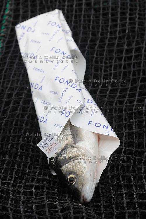 Slovenia -Nel Golfo di Pirano Irena Fonda da alcuni anni alleva i branzini puntando alla massima qualità. E i suoi, sono apprezzati quanto quelli pescati in mare aperto. NELLA FOTO: Il branzino Fonda come viene confezionato ed esportato.