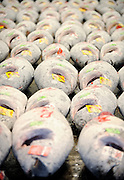 Large frozen tuna are lined up for auction at the world's largest fish and marine products market in Tsukiji, Tokyo on Monday 30 March 2009.