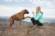 Boxer begging woman for a treat
