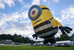 © Licensed to London News Pictures.  10/08/2017; Bristol, UK. Bristol International Balloon Fiesta 2017. Balloons inflate for the crowds but it was too windy for take off and fly on Thursday evening. Picture of Stuart the 'Minion' balloon in his new 'prison outfit' from the latest film. Picture credit : Simon Chapman/LNP
