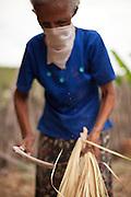 Projeto A Gente Transforma - Chapada do Araripe - Piauí.<br /> <br /> Povoado Várzea Queimada, Município de Jaicós, Estado do Piauí. Fevereiro, 2012.<br /> <br /> Foto: Tatiana Cardeal.
