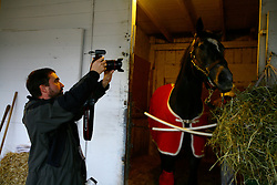 Tom McCarthy and General Quarters get ready for their day by walking the shed row and Tom mucking his stall at barn 37 at Churchill Downs in Louisville. , Tuesday, April 14, 2009 at Churchill Downs in Louisville. <br /> <br /> The Steel Grey colt won the 2009 Bluegrass Stakes at Keeneland Racecourse and is an underdog at this years Kentucky Derby.